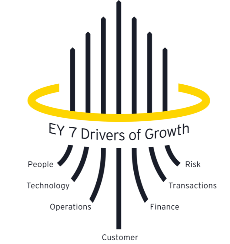 7 drivers of growth